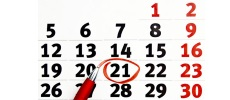 На 21 дней
