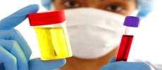 При повышении мочевой кислоты в крови