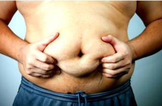 Живот жир